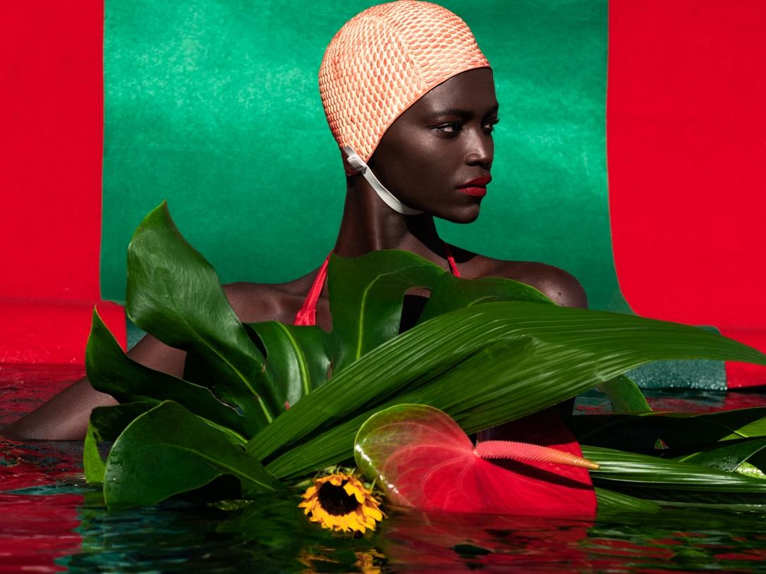 main-image-Dreamer Pool V - a Riot of Color